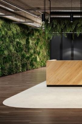 Wineo - organiczna podłoga PURLINE