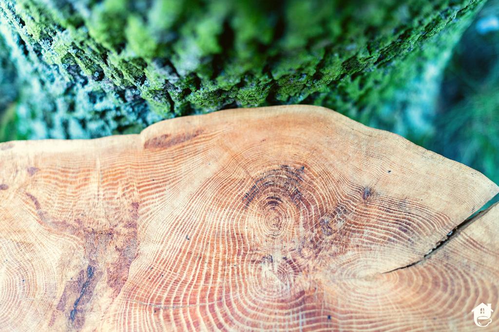 Kawowe klimaty w oryginalnym stylu, czyli stolik inny niż wszystkie.